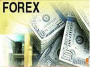 Требуется  инвестор на международный валютный рынок (Forex)