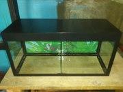 Мини-аквариум с двумя отсеками и съёмной перегородкой.