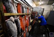 Работник завода по копчению рыбы  - ПОЛЬША