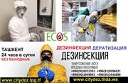 Высокопрофессиональные услуги по уничтожению насекомых,  грызунов,  мыше